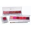 Lip color Palettes